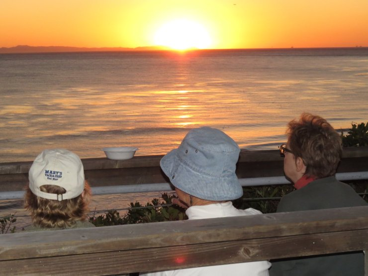 Old friends watch the sunset