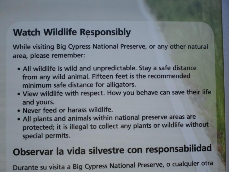7c-alligator warning